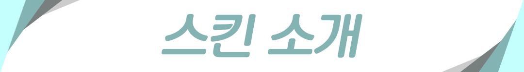 스킨소개.png