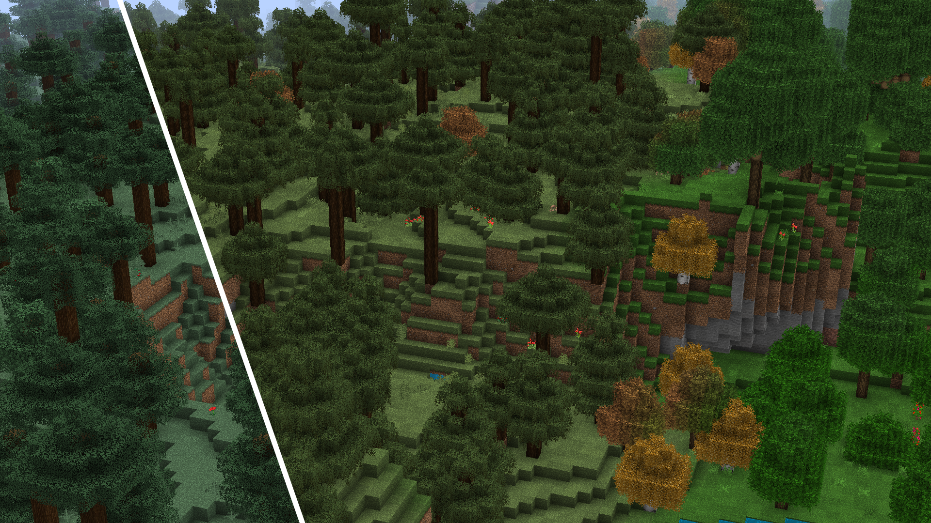 spruce-biomes.png